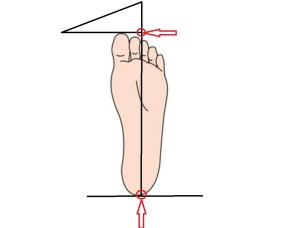 足長を測る